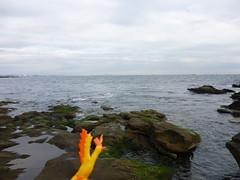 Moltres in Yokosuka, Kanagawa 5 (Kannonzaki park) (Kasadera) Tags: toys figure pokemon pokémon yokosuka 横須賀 神奇寶貝 ポケモン lavados 観音崎公園 moltres 火鳥 ファイヤー pokemonkids 寵物小精靈 파이어 kannonzakipark sulfura ポケモンキッズ 火焰鳥
