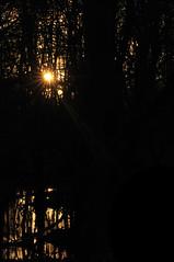 z onder 3 (EWOUD DE BEELDVANGER) Tags: zonsondergang hooglanders schade vijfhoekpark