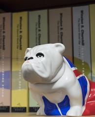 Bulldog (GBaker63) Tags: book olympus bulldog figurine omdem1