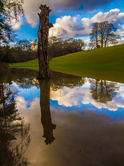 The Flooded Tree (RS400) Tags: blue trees sky west reflection tree water grass clouds reflections landscape cool colours south olympus westonbirt land ngg arboreturn