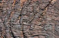 Pahoehoe Lava (Ron Wolf) Tags: nature rock nationalpark idaho explore geology eruption basalt pahoehoe holocene petrology earthscience lavaflow cratersofthemoonnationalmonument volcanism cenozoic quaternary