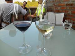 Tasting (RobW_) Tags: southafrica march saturday winery tasting uva mira stellenbosch westerncape 2016 05mar2016