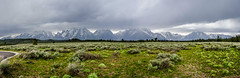 Stormy day at the Tetons (Paladin27) Tags: park mountain storm mountains field grand stormy national wyoming grandtetons teton tetons grandtetonnationalpark