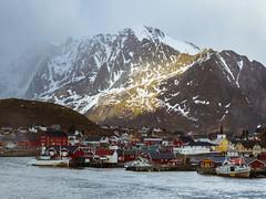 Reine, Lofoten Islands (Jane Simmonds) Tags: sea mountains norway harbour lofoten reine