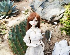 Layla - Desert 1 (radioactive alchemist) Tags: flowers garden spring doll bjd layla celeste mirodollwind