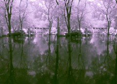 IMG_20150626_110028_3 (zkj102) Tags: city tree rain ir 3d cityscape shanghai stereo infrared htconex