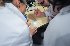 GMO workshop (Waag Society) Tags: experiment science dna gmo bacteria nieuwmarkt biotechnology microorganism geneticmodification waagsociety wetlab