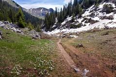 crocus (welenna) Tags: blue schnee sky mountain snow mountains alps landscape switzerland see spring view swiss crocus berge alpen blume berneroberland stockhorn fruhling