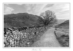 a wall out Rydal. (Tom Baetens) Tags: sky sunlight tree lines landscape mono nikon view outdoor rydal lakedistrict engeland 2015 d610 tombaetens