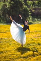 Nikon D810 Beautiful Ballerina Dancers! Goddesses Dancing Ballet!  Ballet amongst the California Spring Wildflowers! (45SURF Hero's Odyssey Mythology Landscapes & Godde) Tags: california girls ballet hot sexy art girl beautiful point dance spring model nikon ballerina pretty dancers dancing fineart goddess dancer tall pointe wildflowers thin goddesses tutu fit femmes leotard fineartphotography tutus amongst ballerinas leotards pointeshoes balletshoes onpoint sexyballerina d810 balletdance artofdance balletgirl classicalbeauty classicdance classicballet onpointe prettyballerina ballerinadancers fineartdance fineartballet ballerinapointe ballerinagoddess fineartballerina pointeballey