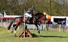 2016 Horses National (Steenvoorde Leen - 2.7 ml views) Tags: maarsbergen doorn utrechtseheuvelrug horses national 2016 landgoed netherlands event pferde militairy paarden springen cross horse hindernis fench jumping reiten sgw