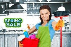 cleaning maid (montrealmaidservices) Tags: people green photography women cleaning apron housework highkey cleaner maid domesticlife chores oneperson caucasian springcleaning cleaningproduct russianfederation housecleaning domesticstaff onewomanonly stereotypicalhousewife washingupglove stereotypicalhomemaker