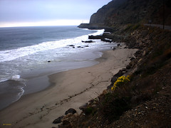 Beach & Fog (BudCat14/Ross) Tags: california beach fog pacific pch westcoast coreopsis pointmugu