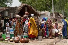 Water post in Jaipur 2 (Holofoto) Tags: india asia natur vann urne portretter mennesker indere vannkrukke portretterfraindia indiskvannpost