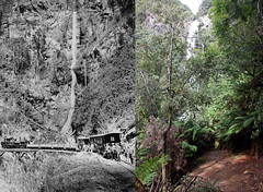 North East Dundas Tramway - Montezuma Falls (cymro76) Tags: waterfall australia tasmania narrowgauge montezumafalls trestlebridge beyergarratt 2ftgauge northeastdundastramway