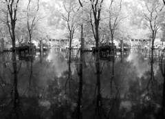 IMG_20150626_110028-2 (zkj102) Tags: city tree rain ir 3d cityscape shanghai stereo infrared htconex