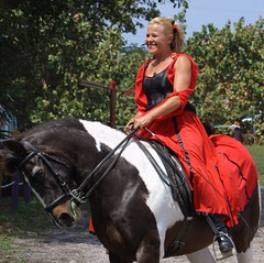 Lady in Red (PelicanPete) Tags: horses horse usa smile animal sport shadows unitedstates emotion florida action outdoor helmet fast gear battle calm riding knights lance sword knight shield serene renaissancefestival elegant sunlit excitement joust stallion reddress southflorida skill fieldofdreams ladyinred sanantoniotexas horsebackrider floridarenaissancefestival armsandarmor thekingandqueen viewingstand deerfieldbeachflorida thejoust kingsroyalorders nobleattire newentertainer noblecauseproductions feb2016 nowresidesintampafl 24rdannual originallyfromgermany ladycarolinesdancingstallions