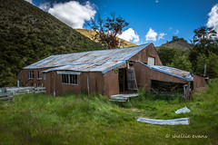 Historic Quailburn Station Woolshed, MacKenzie Country (flyingkiwigirl) Tags: house abandoned station yard sheep country stock run historic mackenzie homestead doc dip woolshed benmore quailburn