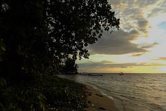 West End - Evening Beach Walk (Drriss & Marrionn) Tags: travel sunset sea seascape nature water night island nightshot outdoor honduras diving tropicalisland caribbean serene westend centralamerica roatn caribbeanisland mesoamericanbarrierreef scubadivingcaribbeansea
