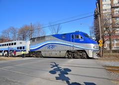 AMT 176 (Michael Berry Railfan) Tags: train quebec montreal commutertrain bombardier amt passengertrain emd gmd f59phi agencemtropolitainedetransport westmountsub amt1320 amt176