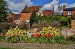 Spring view (dlanor smada) Tags: flowers sky tulips aylesbury bucks