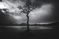 Milarrochy Bay (Markk Donnelly) Tags: trekking scotland fuji hills fujifilm lochlomond lanscape mkk hillwalking xseries xt1 mirrorless milarrochybay fujixshooter mkkphotography