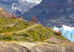 Glaciar Perito Moreno (Edd Green) Tags: chile winter vacation patagonia holiday snow cold green ice argentina glacier paseo sur glaciar perito moreno vacaciones edd calafate greenmasterxhotmailcom