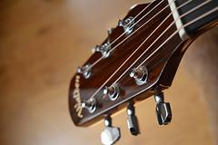 Walden Gitaar (Werner Willemsen) Tags: music guitar walden gitaar
