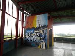 Graffiti nella Stazione di Grugliasco (TO) (simone.dibiase) Tags: torino graffiti 1 piano uno di stazione ascensore grugliasco