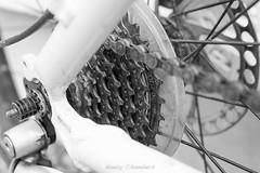 Dogwood week 15 - metal (nancychambersphotography) Tags: white black bike metal cogs dogwood52 dogwoodweek15