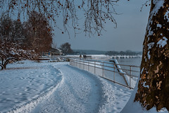 winter on river Sava