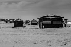 Ghost Beach #1xDia (019-366) (Danel Aisemberg) Tags: blanco beach argentina monocromo nikon y buenos aires negro playa soledad nikkor pinamar 70300 desierta d5200