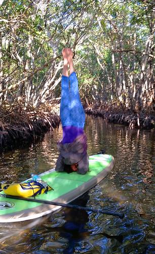 2_10_16 Kayak Paddleboard Tour Sarasota FL 03