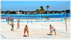 Northshore Park - St Petersburg, Florida (lagergrenjan) Tags: park beach st florida north petersburg shore volley