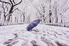 Snow  +Central Park = Beautiful (RomanK Photography) Tags: nyc newyorkcity winter snow nature umbrella landscape centralpark manhattan snowstorm sonyalpha