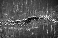 2O1A3398 (JACKGFOTOLA) Tags: monochrome cali canon photography la losangeles los angeles westcoast 6thst laskyline laphotography