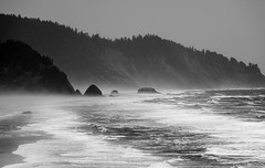 People's Coast (BrettLarson50) Tags: ocean beach oregon unitedstates roadtrip oregoncoast cannonbeach pacificcoast 2015 beachweekend