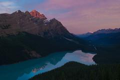 Peyto Lake, Alberta, Canada (Sergei Mou) Tags: canada alberta banff peyto icefieldsparkway