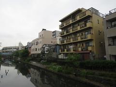 IMG_8726 (Momo1435) Tags: japan tokyo koto kotoku