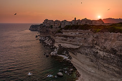 Golden Bonifacio (Ron Jansen - EyeSeeLight Photography) Tags: ocean city sunset red sea summer orange sun france water yellow gold golden town flying beige warm europe gull gulls corsica cliffs upper bonifacio colortones