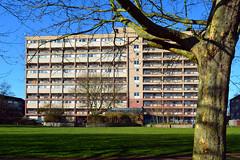 Frensham Court / Phipps Bridge Estate (Images George Rex) Tags: uk england london unitedkingdom britain modernism flats highrise residential modernist socialhousing maisonettes phippsbridgeestate imagesgeorgerex photobygeorgerex