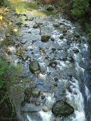 Cliff_Park-2 (C Wood) Tags: family creek bc britishcolumbia mapleridge kanaka cliffpark
