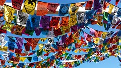 Project 366:066 (Jacqi B (catching up)) Tags: newzealand flags nz wellington prayerflags aotearoa frankkittspark fkp project365 wellingtonwaterfront project366 nzfestival project3652016 365project2016 3662016aleapoffaith 365moments2016 366the2016edition 2016onephotoeachday project3662016 flymeupwhereyouare