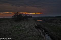 Valli di Comacchio (Federico Ticchi) Tags: winter sunset italy sun color art lights italia tramonto arte di luci ferrara laguna sole inverno colori palude caldo comacchio valli