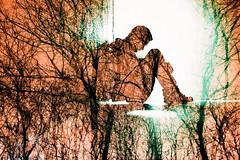 -deep inside forest (Hodaka Yamamoto) Tags: longexposure tree film silhouette forest lomo lca lomography doubleexposure tunnel double lomolca multipleexposure negative filmcamera doubles multiexposure filmphotography