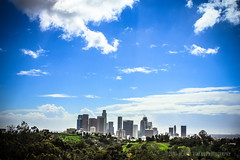 LA from Police Academy ( In 2 Making Images | L.A.) Tags: losangeles bluesky noon dramaticsky losangelesskyline cloudysky elysianpark policeacademy latimes discoverla beautifulpicturesandcolorsoflosangeles