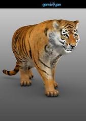 3D Tiger Animal ( Quadruped ) Character Modeling (GameYanStudio) Tags: wild game texture animal studio design modeling designer tiger cartoon company animation warrior creature development rigging rendering sculpting animator texturing riggers quadruped