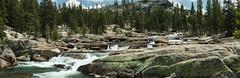 IMG_1305-Pano (dangerismycat) Tags: california panorama waterfall yosemite tuolumnemeadows tuolumneriver glenaulintrail
