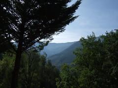 Paysage du domaine de L'origan (cristoflenoir) Tags: camping naturism provence naturisme naturiste