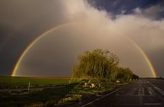 Una tarde de primavera (Anpegom fotografa) Tags: espaa primavera arcoiris lluvia spain agua zamora castillaylen chaparrn aguacero 1635vr nikond750